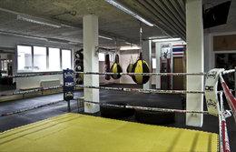 Boxring nach langer Odyssee angekommen